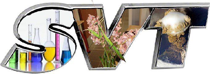 Logo S.V.T.
